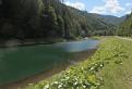 Tajch v Ľubochnianskej doline / 1.3077