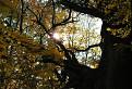 Jesenný úsvit pri starom mohykánovi / 1.0952