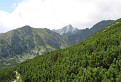 Furkotska dolina s Krivanom