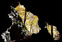 Kremenná jaskyňa / 1.1429