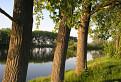 Stromy a voda