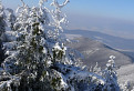 Zima na Palúchu / 1.2667