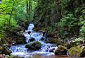 Chotarny potok