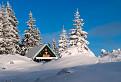 V panenskom snehu pod Suchým vrchom / 1.0192