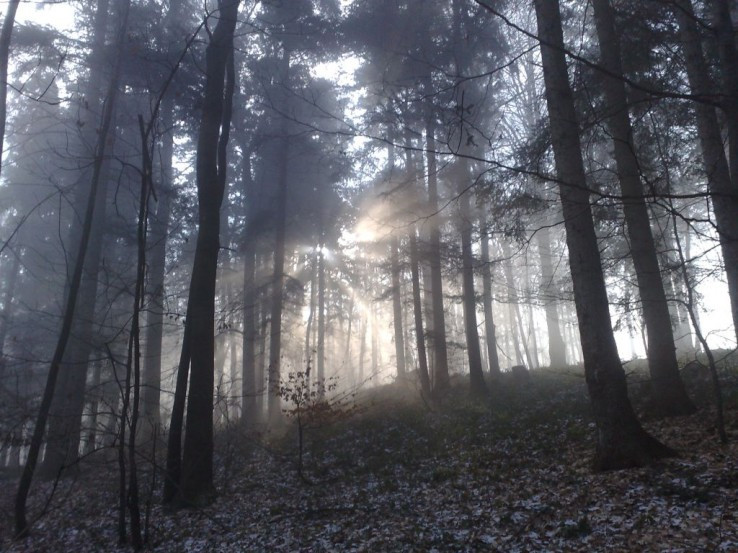 Boj slnka a hmly