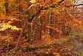 Jeseň v Zádielskej doline / 1.0625