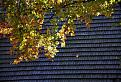 Jesenná šindľová strecha / 1.2857
