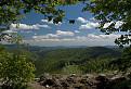 Pohľad z lesa / 1.1579